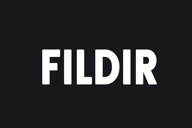 - FILDIR - Çabuk, hızlı telaşlı